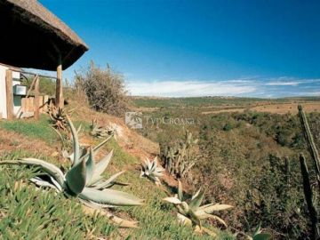 Bushmans River Lodge
