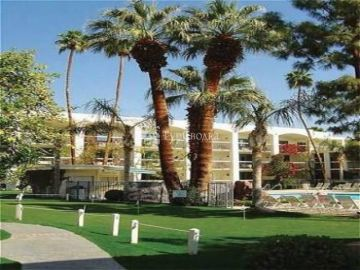 The Palms Hotel 4*